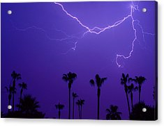 Palm Trees And Spider Lightning Striking Acrylic Print by James BO  Insogna