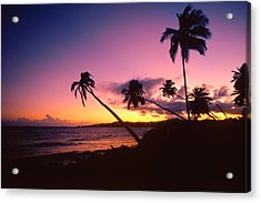 Palmas Del Mar Sunset Puerto Rico Acrylic Print by George Oze