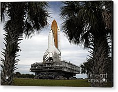 Palmetto Trees Frame Space Shuttle Acrylic Print by Stocktrek Images