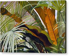 Palms At Fairchild Gardens Acrylic Print by Stephen Mack