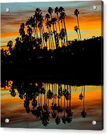 Palms Reflection Acrylic Print by John Pierpont