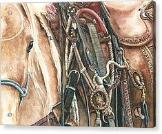Palomino Acrylic Print by Nadi Spencer