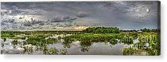 Panorama, Florida Wetlands At Sunset Acrylic Print by Felix Lai