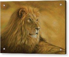 Panthera Leo - Lion - Monarch Of The Animal Kingdom Acrylic Print by Steven Paul Carlson