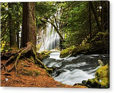 Paradise At Panther Creek Acrylic Print by Angie Vogel