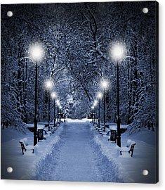 Park At Christmas Acrylic Print by Jaroslaw Grudzinski