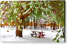 Park In Winter With Snow Acrylic Print by Lanjee Chee