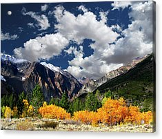 Parker Canyon Fall Colors California's High Sierra Acrylic Print by Bill Wight CA