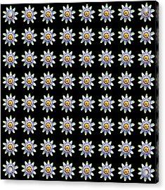 Passion Flower Design 2 Acrylic Print by Bishopston Fine Art