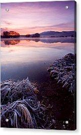 Pastel Dawn Acrylic Print by Mike  Dawson