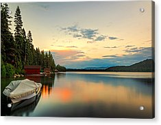 Patch Of Color Acrylic Print by Maria Coulson