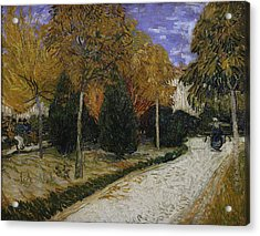 Path In The Park At Arles Acrylic Print by Vincent Van Gogh