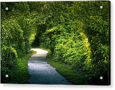 Path To The Secret Garden Acrylic Print by Marvin Spates