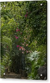 Path With Flowers Acrylic Print by Tito Santiago