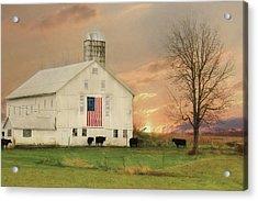 Patriotic Cattle Farm Acrylic Print by Lori Deiter