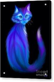 Peace Cat Blues Acrylic Print by Nick Gustafson