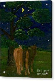 Peaceful Night Acrylic Print by Anna Folkartanna Maciejewska-Dyba