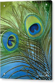 Peacock Candy Blue And Green Acrylic Print by Mindy Sommers