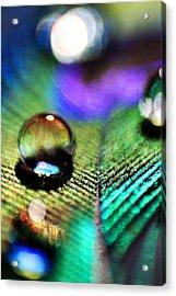 Peacock Jewel Acrylic Print by Kerry Langel