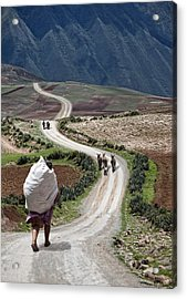 Peasant's Journey Acrylic Print by Wendy White