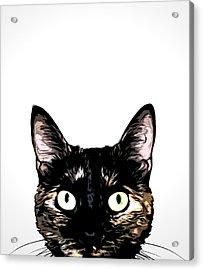 Peeking Cat Acrylic Print by Nicklas Gustafsson