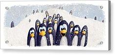 Penguin Winter Acrylic Print by David Breeding