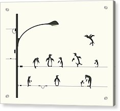 Penguins On A Wire Acrylic Print by Jazzberry Blue
