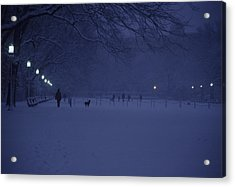People Walk Their Dogs Acrylic Print by Stacy Gold