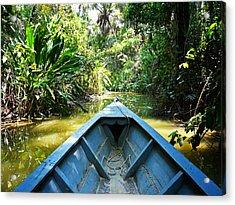 Peru Amazon Boat Acrylic Print by Photo, David Curtis