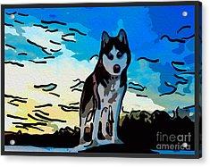 Pet Gone Wild Acrylic Print by Omaste Witkowski