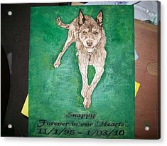 Pet Portrait Wood Burn Wall Plaque U Provide Picture By Pigatopia Acrylic Print by Shannon Ivins