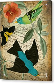 Petals And Wings V Acrylic Print by Mindy Sommers