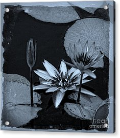 Petals Floating On Water Bw Acrylic Print by Ella Kaye Dickey