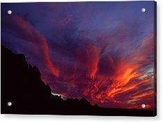 Phoenix Risen Acrylic Print by Randy Oberg