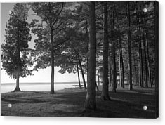 Picnic Table View-newport State Park Acrylic Print by Stephen Mack