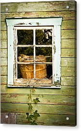 Pine Cones In The Window Acrylic Print by Maggie Terlecki