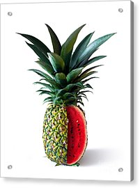 Pinemelon 2 Acrylic Print by Carlos Caetano