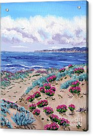 Pink Daisies In Sand Dunes Acrylic Print by Laura Iverson