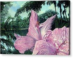 Pink Hibiscus Acrylic Print by Stephen Mack