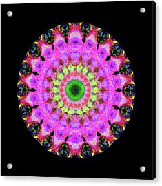 Pink Love Mandala Art By Sharon Cummings Acrylic Print by Sharon Cummings