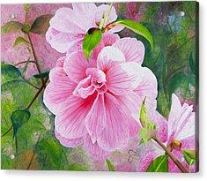 Pink Swirl Garden Acrylic Print by Shelley Irish