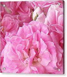 Pink Acrylic Print by Tom Romeo