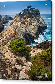 Pinnacle Point Acrylic Print by Inge Johnsson