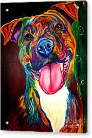 Pit Bull - Olive Acrylic Print by Alicia VanNoy Call