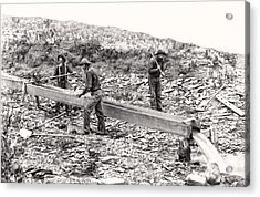 Placer Gold Mining C. 1889 Acrylic Print by Daniel Hagerman