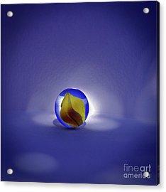 Planetary Study No. 6 Acrylic Print by Skip Willits