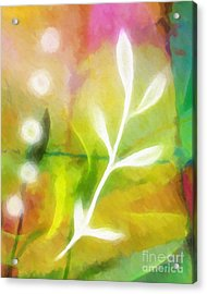 Plant Of Light Acrylic Print by Lutz Baar