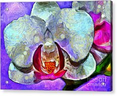 Playful Orchid Acrylic Print by Krissy Katsimbras