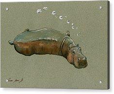 Playing Hippo Acrylic Print by Juan  Bosco