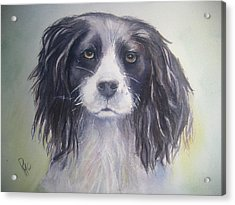 Pleeeese Play Acrylic Print by Patricia Pushaw